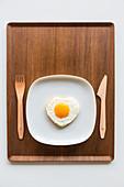 Cholesterol, conceptual image