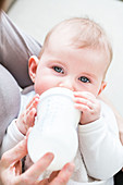 Baby girl drinking milk from a bottle