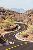 Road, Baja California, Mexico