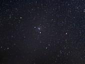 Cancer constellation, optical image