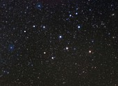Lepus constellation, optical image