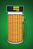 Illustration of corn fuel pump
