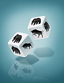 Illustration of dice with bull and bear print