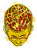 Illustration of human brain and knowledge