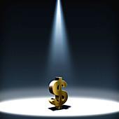 Illustration of spot light on dollar sign