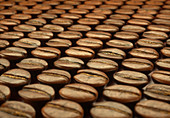 Coffee beans, close up