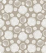 Scallop shells, illustration