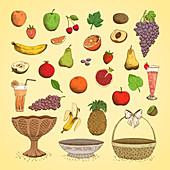 Fruits, illustration