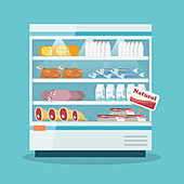 Refrigerated food cabinet, illustration