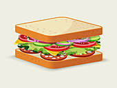Salami sandwich, illustration
