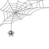 Spider, illustration