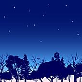 Night sky, illustration