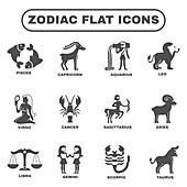 Zodiac icons, illustration