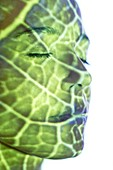 Woman with green pattern projected on face