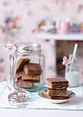 Hazelnut Chocolate Squares