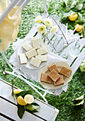 Lemon Cheesecake Squares & Honey and Spice Slice