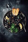 Mussels in a white wine broth with lemon, parsley and toasted bread