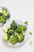 Broccoli florets on a white plate