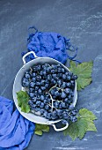 Black grapes on a blue surface