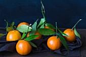 Clementinen mit Blatt