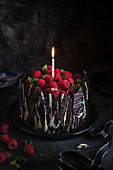 Chocolate cake with raspberries and chocolate bark