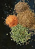 Linsen und Reiskörner auf schwarzem Untergrund (Zutaten für Hundefutter)