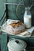 No-knead spelt bread