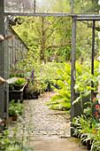 Gepflasterter Weg führt aus Gärtnerei in den Garten