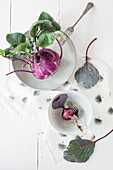 Bowls, plate and purple kohlrabi on printed cloth
