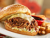 Pulled pork burgers with cheese