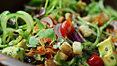 Gemischten Salat zubereiten