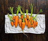 Small garden carrots in different shapes and sizes