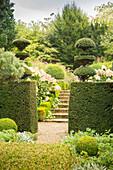 Durchgang in formgeschnittener Hecke führt zu Treppe zwischen Beeten mit Hortensien