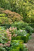 Herbstbeet mit Strauch-Hortensien und Dahlien (Les Jardin de Castillon, Frankreich)