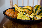A black bowl filled with pumpkins and gourds on an antique wooden chair