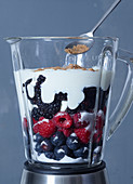 Ingredients for frozen yoghurt with berries in a blender