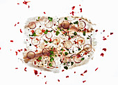 Fish carpaccio on a white background