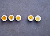 Five hard boiled egg halves on a grey background