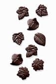 Various chocolate leaves