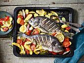 Oven-roasted Mediterranean seabream with lemon potatoes