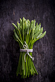 A Bunch of Wild Asparagus