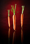 Three carrots against a red and black background