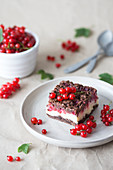 Cheesecake squares with chocolate crust and red currant