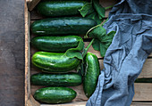 Freshly harvested cucumbers (cucumis sativus) with leaves in a wooden crate