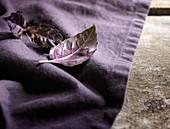 Lila Basilikumblätter auf violettem Leinentuch