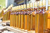 Bottles of grappa, Alp San Romerio, Grissons, Switzerland