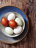 Bio-Eier in einer Schale