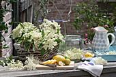 Blüten von Sambucus nigra ( Holunder ) mit Citrus limon ( Zitronen )