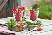 Eßbare Tischdeko : Gläser mit reifen Ribes rubrum ( Roten Johannisbeeren )