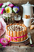 Tiramisu torte with spoon biscuits